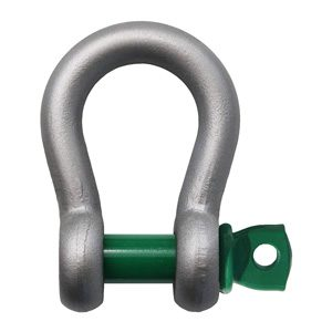 Van Beest Screw Pin Anchor Shackle